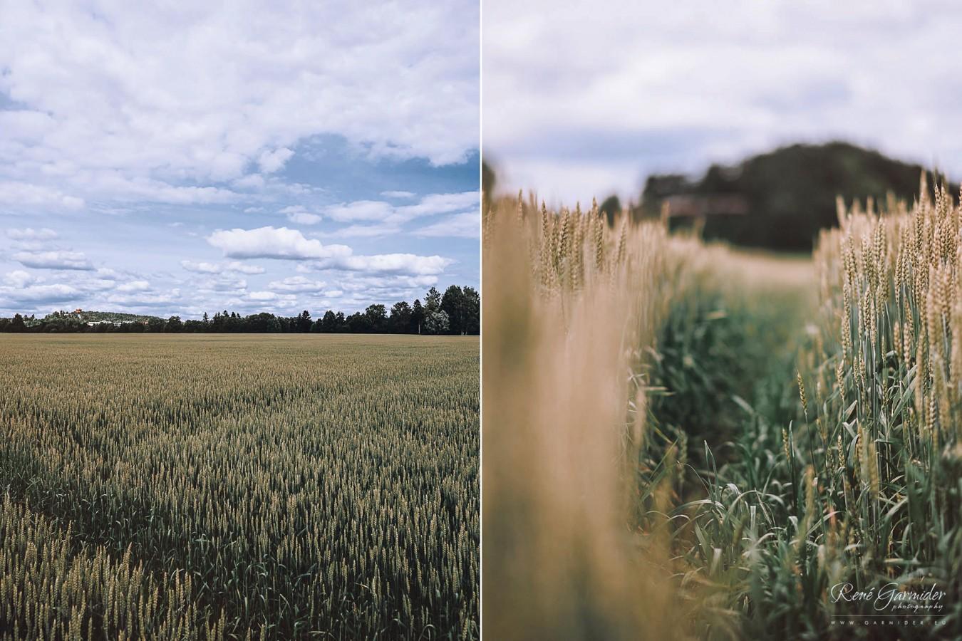 valokuvaaja-salo-haakuvaaja-halikko-mathildedal-emma-josh-3055